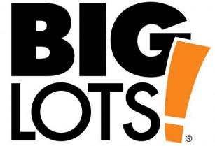 Big Lots – Store Associates & Overnight Associates (santa clara ,Milpitas, Cambell. South san jose, and Downtown San jose)