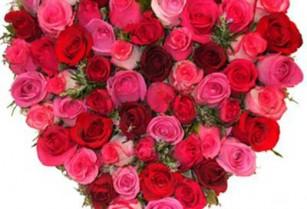 Valentine's Day Flowers (burlingame)