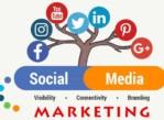 Social Media Guru & Video Specialist for busy Bellevue RE Firm!!! (Bellevue (Factoria))