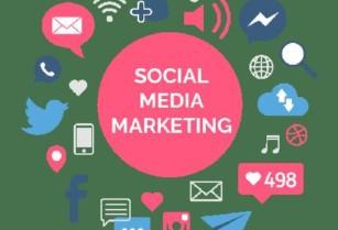 Looking for Marketing Guru (Facebook/Youtube/IG, Etc)